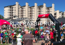 Run Rabbit Run : La course